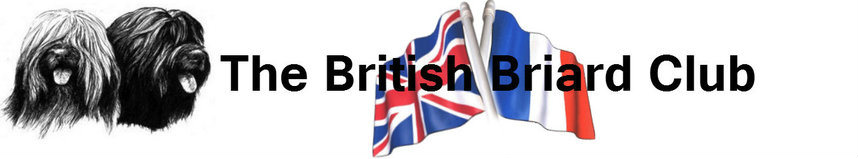 British Briard Club Logo